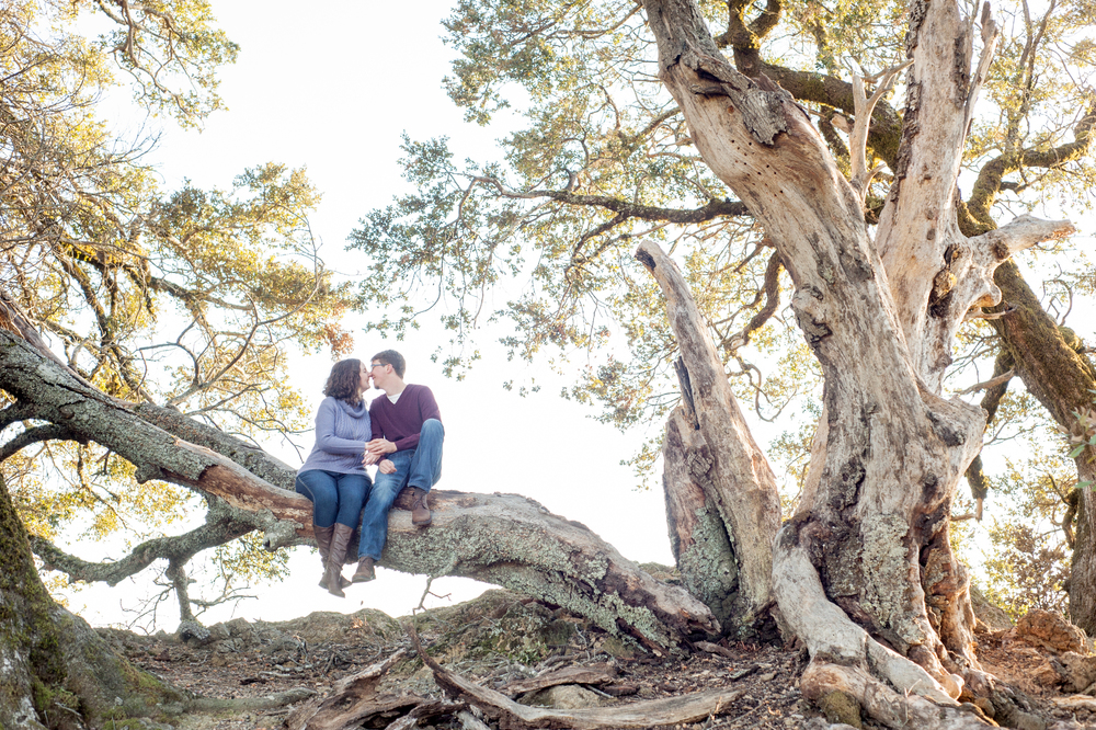 mount-tamalpais-marin-engagement-shoot-0002.jpg