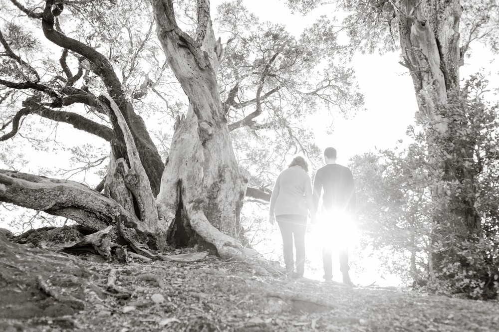 mount-tamalpais-marin-engagement-shoot-0007.jpg