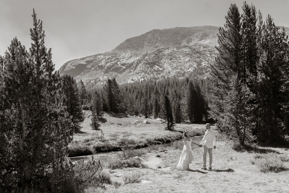 tenaya-lake-yosemite-national-park-wedding-photographer-vc54.jpg