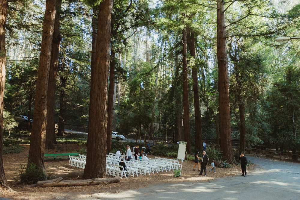 23san-francisco-stern-grove-wedding-photographer-vivianchen-174.jpg