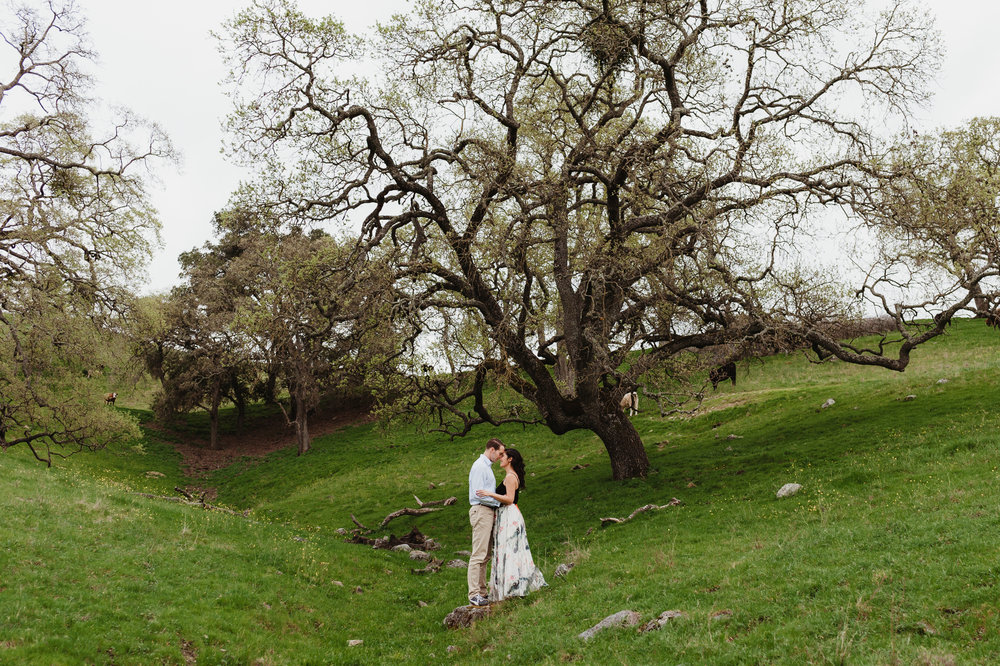 16-sunol-regional-wilderness-engagement-vivianchen-0105.jpg