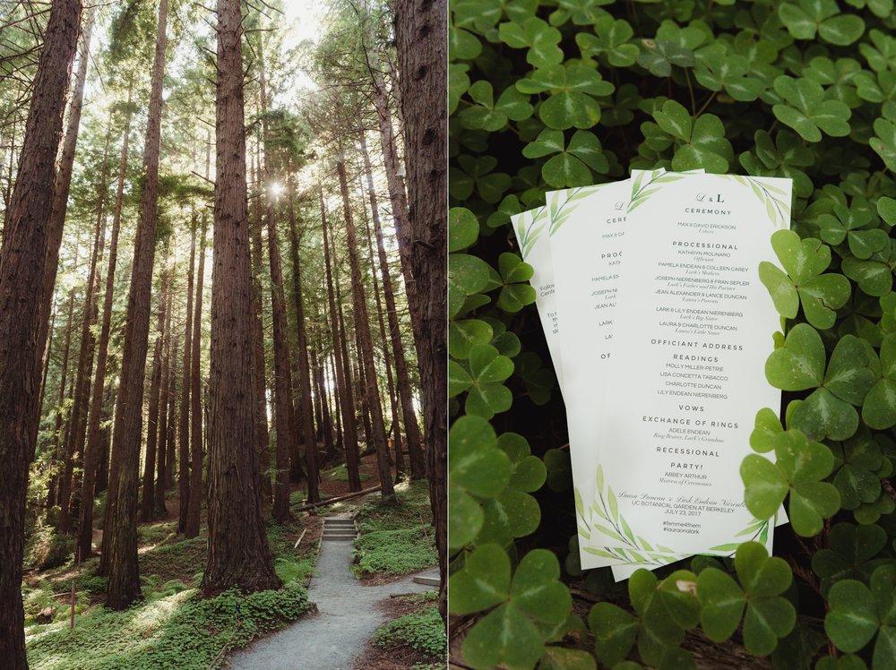 lgbtq-uc-berkeley-botanical-garden-wedding-vivianchen-011.jpg