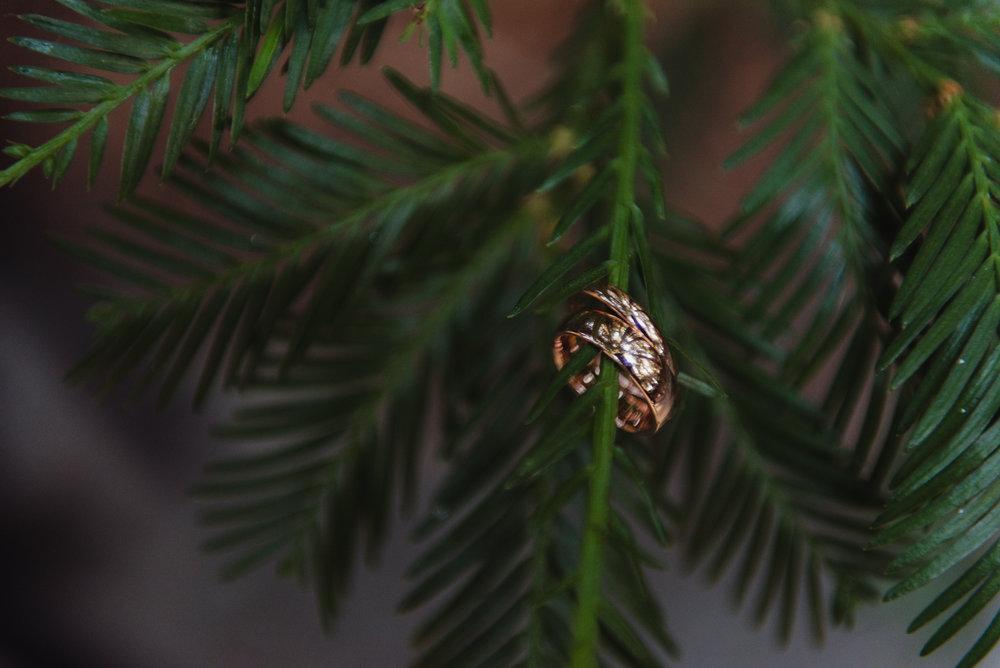 lgbtq-uc-berkeley-botanical-garden-wedding-vivianchen-022.jpg