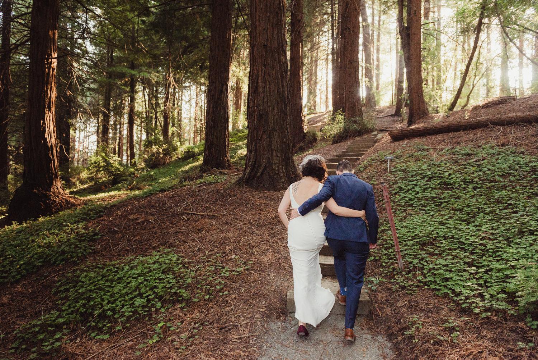 LAURA & LARK in Berkeley » Mather Redwood Grove & UC Botanical ...