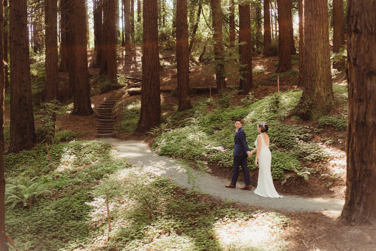 LAURA & LARK in Berkeley » Mather Redwood Grove & UC Botanical ...