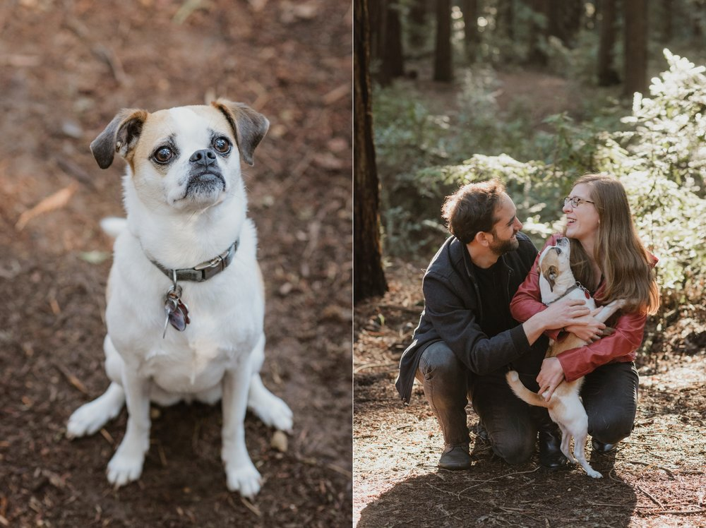 oakland-joaquin-miller-park-redwood-grove-engagement-session-vivianchen-123_WEB.jpg
