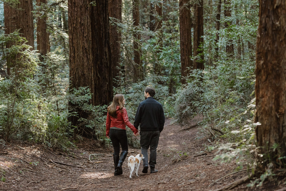 oakland-joaquin-miller-park-redwood-grove-engagement-session-vivianchen-059.jpg