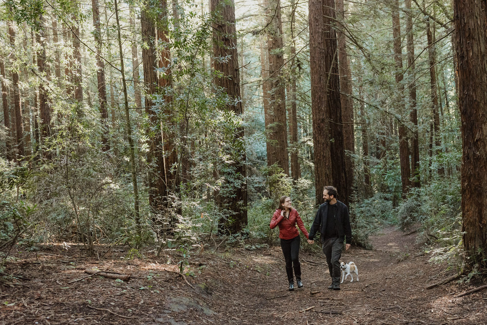 oakland-joaquin-miller-park-redwood-grove-engagement-session-vivianchen-071.jpg