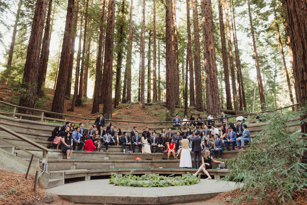 13-mather-redwood-grove-uc-botanical-garden-wedding-vivianchen-102.jpg