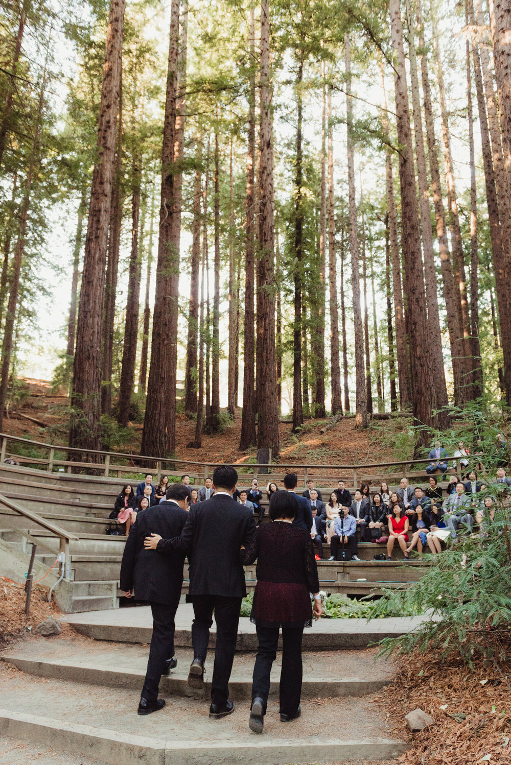 18-mather-redwood-grove-uc-botanical-garden-wedding-vivianchen-110.jpg
