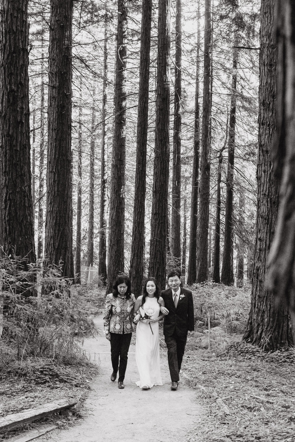 20-mather-redwood-grove-uc-botanical-garden-wedding-vivianchen-132.jpg