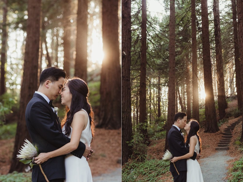 37-mather-redwood-grove-uc-botanical-garden-wedding-vivianchen-373_WEB.jpg