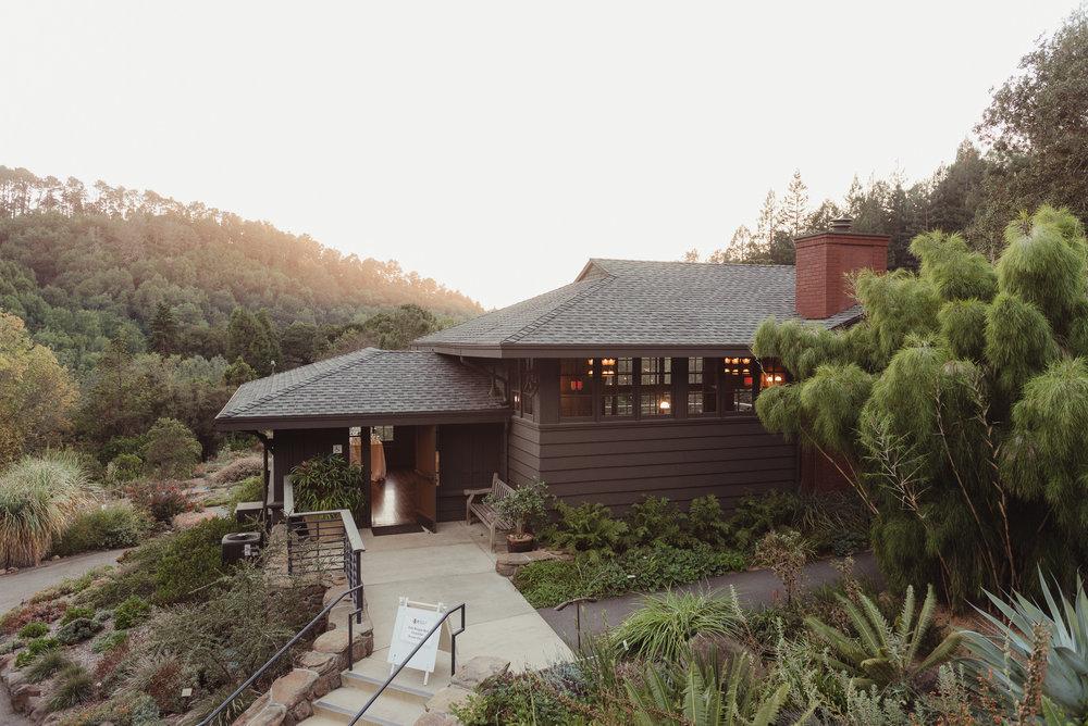 44-mather-redwood-grove-uc-botanical-garden-wedding-vivianchen-024.jpg