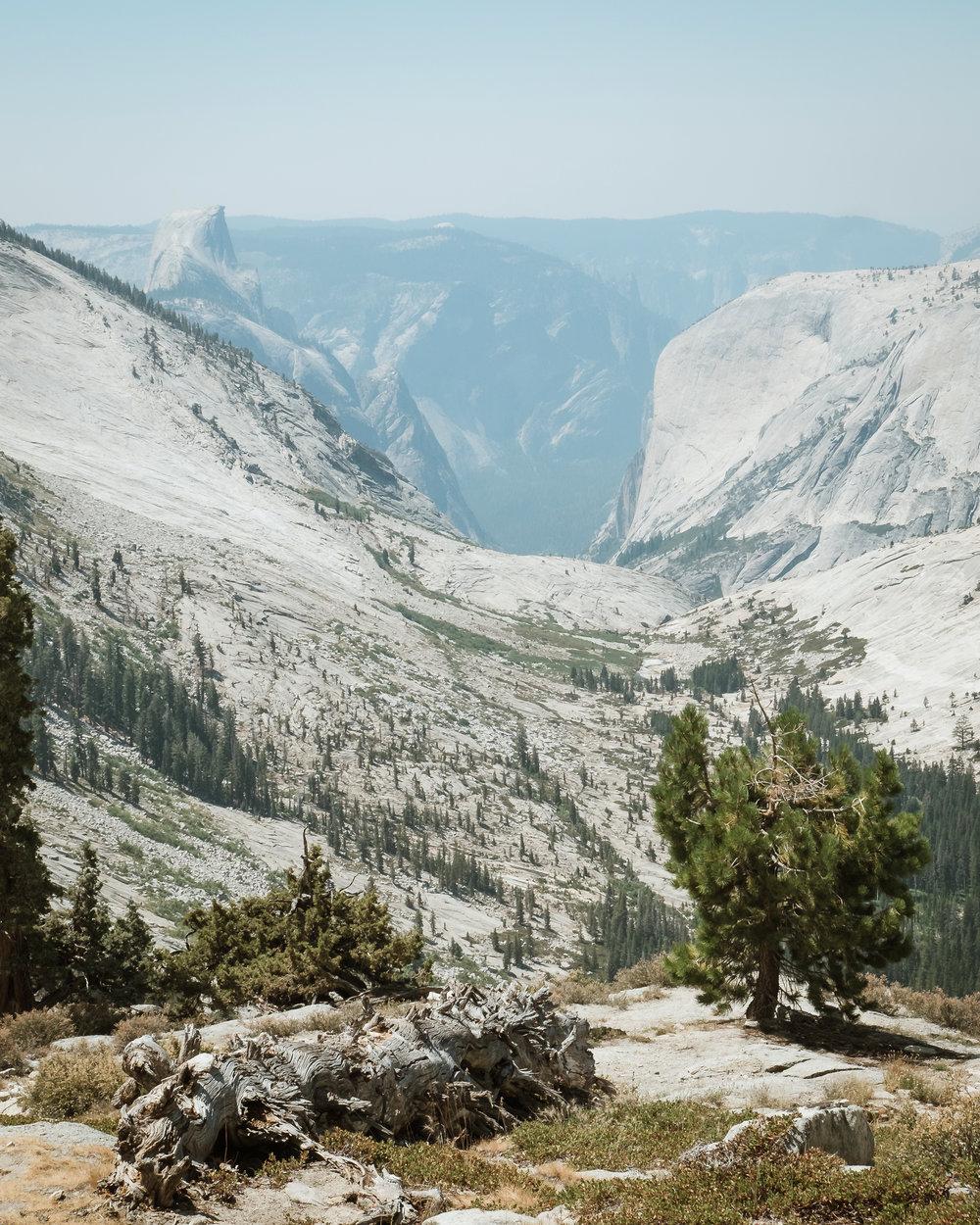 yosemite-national-park-high-sierras-loop.jpg