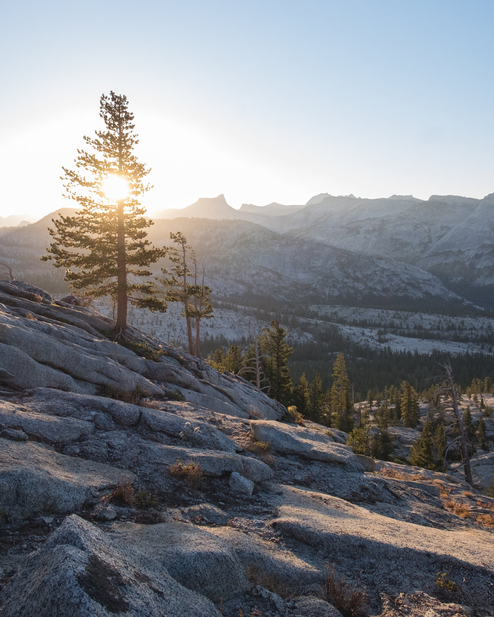 may-lake-high-sierras-yosemite-sunrise-vivianchen-1181.jpg