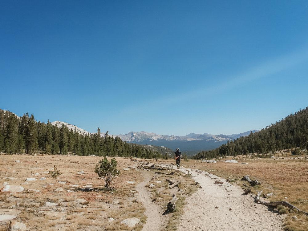 yosemite-high-sierra-camps-vivianchen-2476.jpg