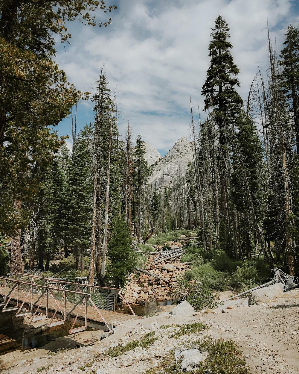high-sierra-camp-loop-yosemite-vivianchen-2553.jpg