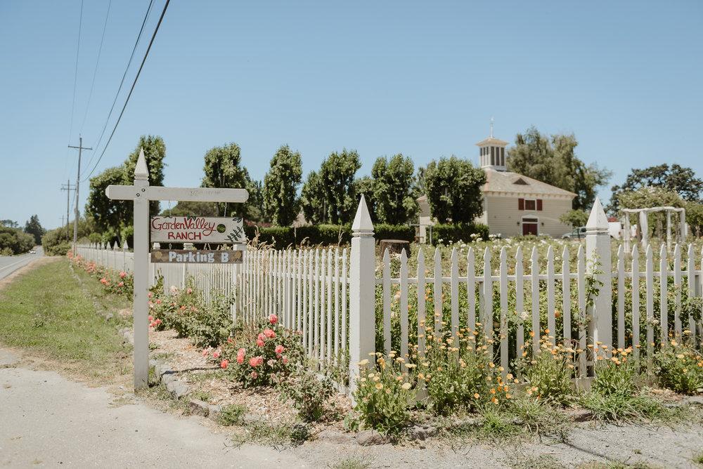 008-petaluma-garden-valley-ranch-wedding-vivianchen-008.jpg