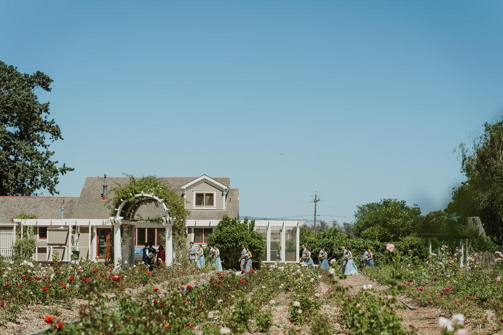 024-petaluma-garden-valley-ranch-wedding-vivianchen-141.jpg