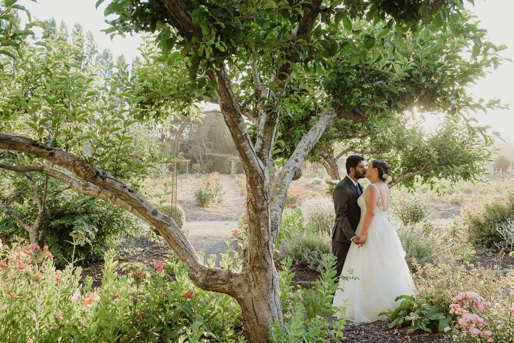 096-petaluma-garden-valley-ranch-wedding-vivianchen-584.jpg