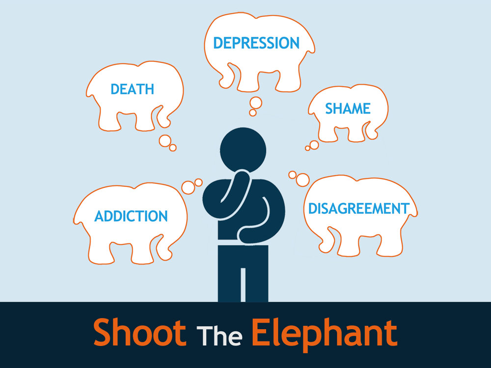 Shoot the Elephant SERIES.jpg