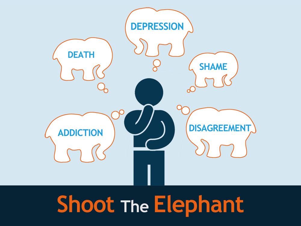 Shoot the Elephant SERIES.jpg
