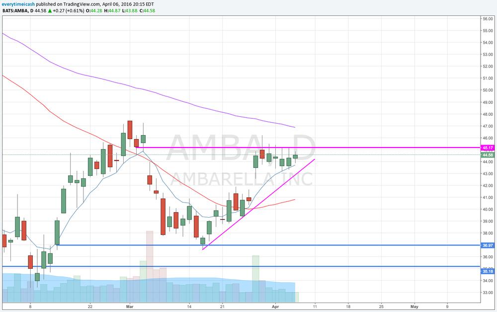AMBA D3.png