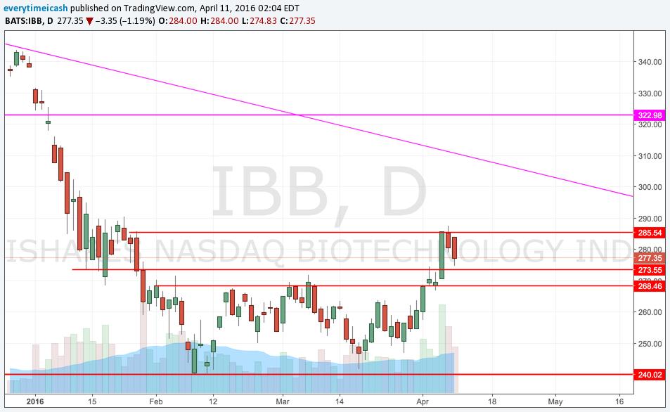 IBB D.png