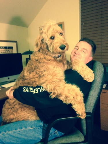 Still thinks he's a lap dog!