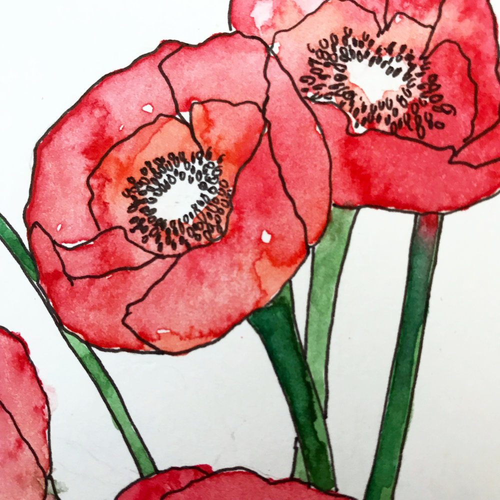Evident on the stems of the poppy flowers, bristol paper does not absorb water and pigment smoothly which leaves visible lines and a lack of blending of colors, by danielleandco.com