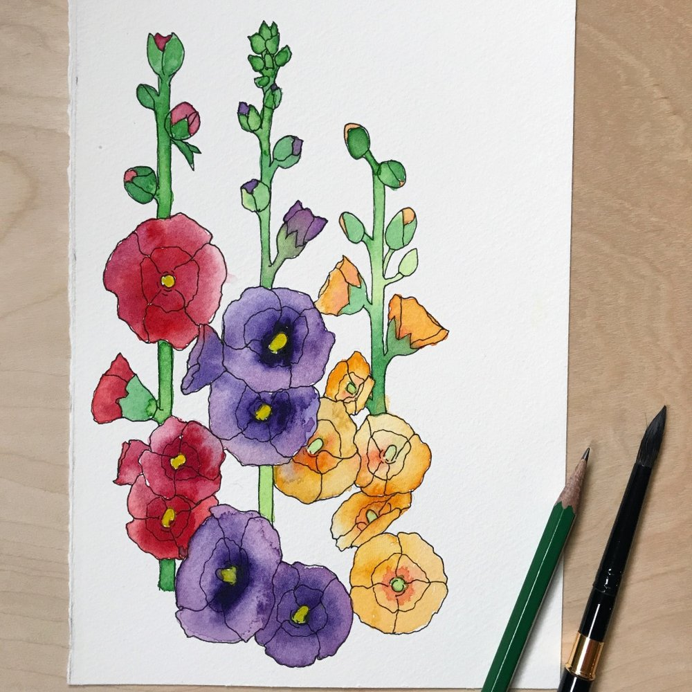 Hollyhock flowers drawn & painted on Fabriano Cold Press paper, by danielleandco.com