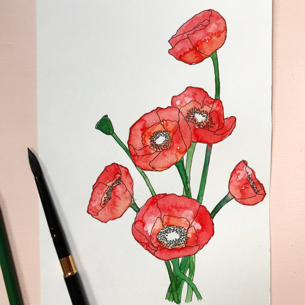 Poppy flowers drawn & painted on Canson XL Bristol Smooth paper, by danielleandco.com