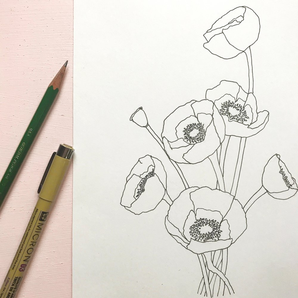 Poppy flowers drawn on Canson XL Bristol Smooth paper, by danielleandco.com