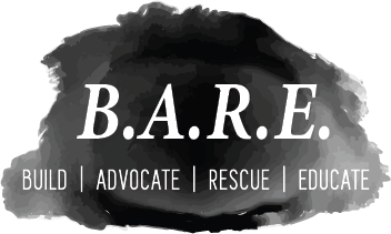 Bare Logo 1.png