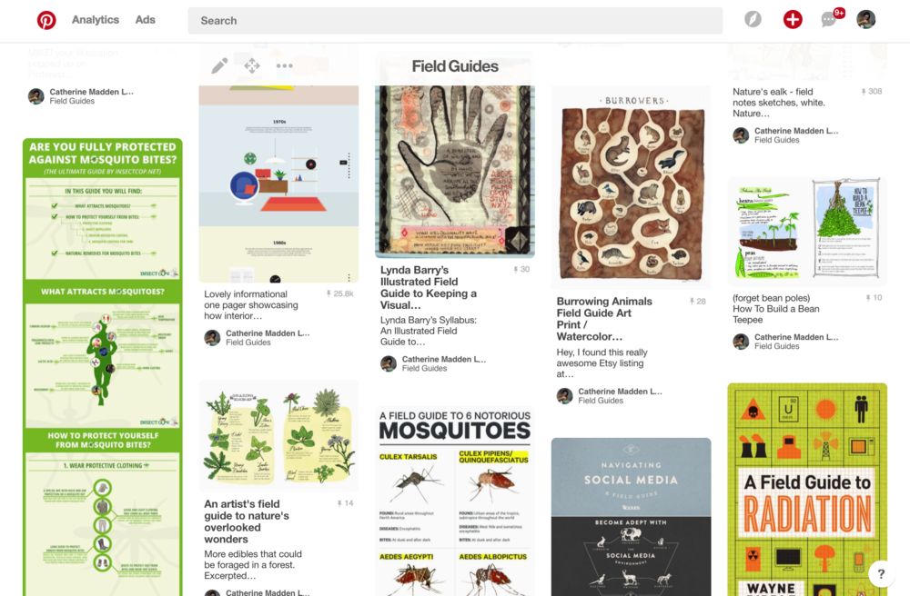 A Pinterest board of visual Field Guides