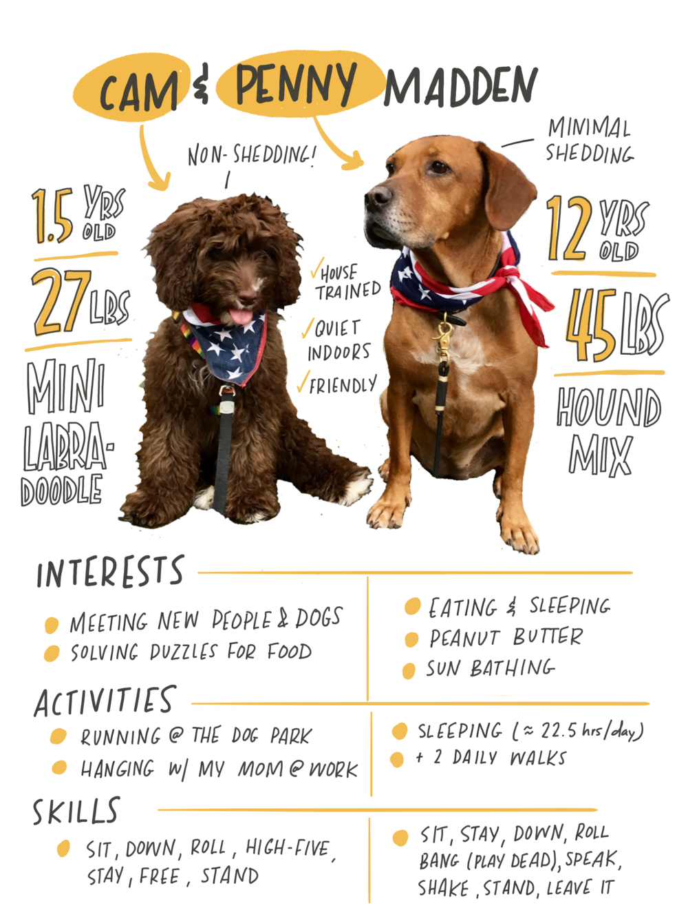 A visual resume, for pets!