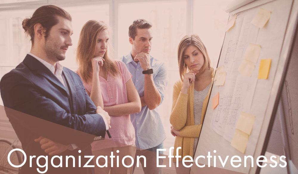 Blaze Home Portals Organization Effectiveness-01.jpg