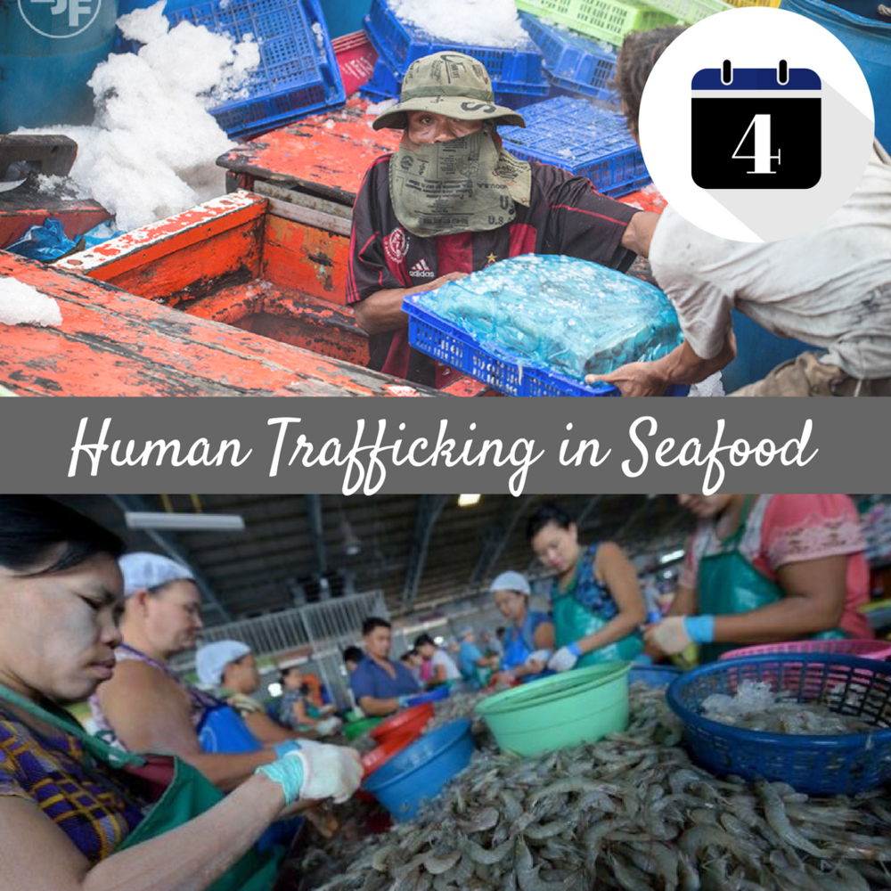 Human Trafficking in Seafood