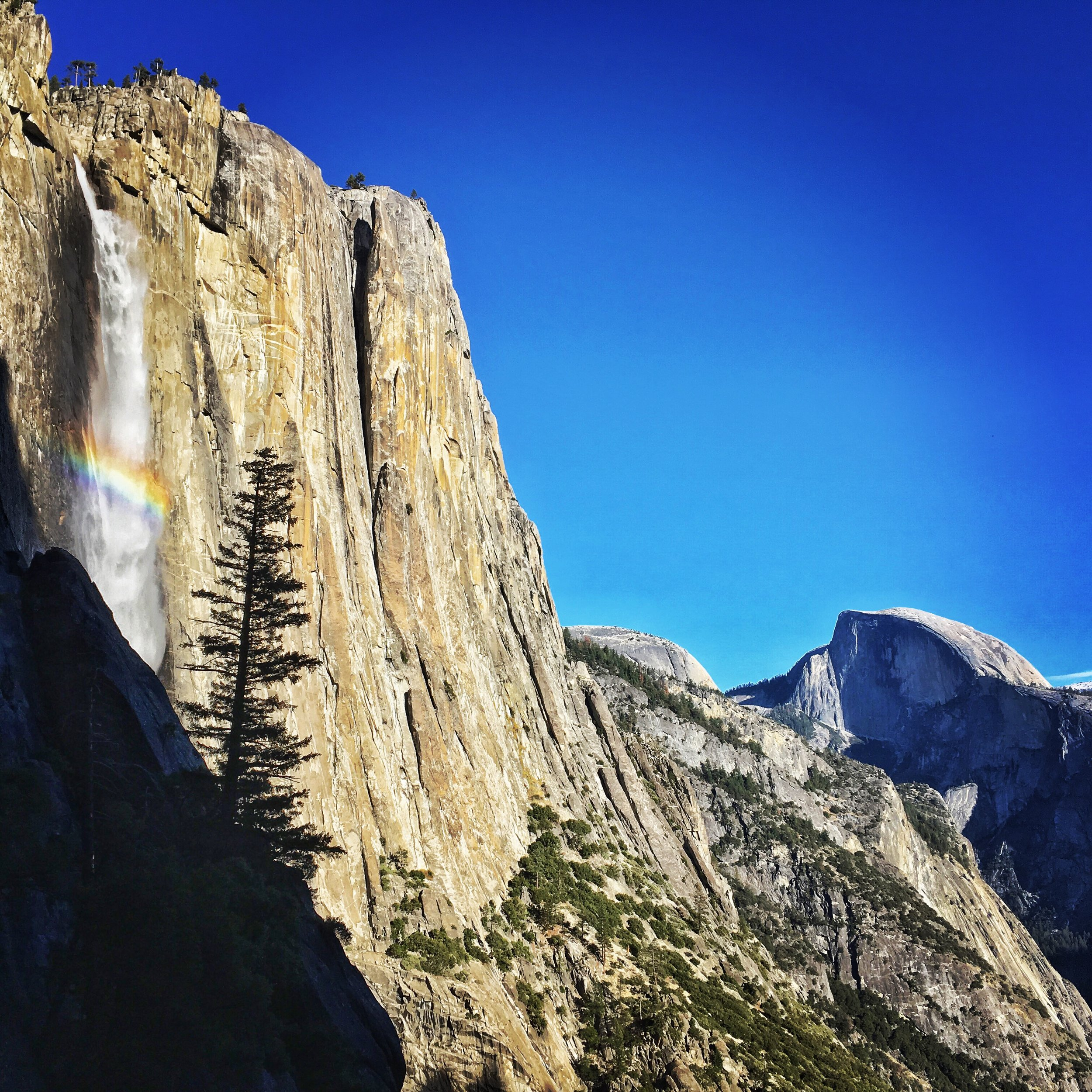 View of Yosemite Falls and Half Dome  from Lower Yosemite Falls.