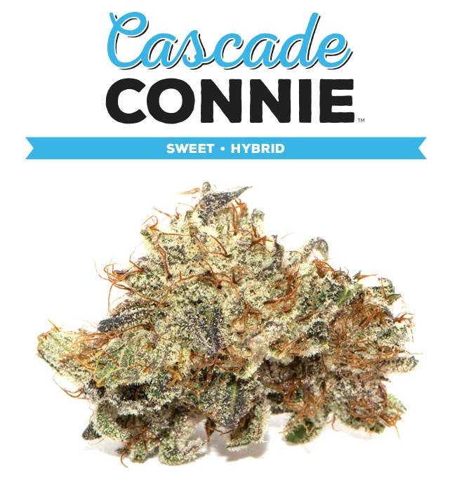 strain_cascade-connie.jpg