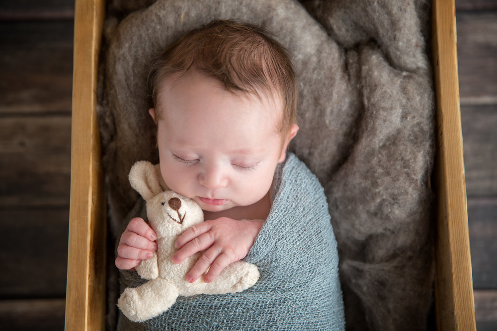 Newborn baby boy in a crate holding a bunny toy. Calgary newborn photographer. Milashka Photography