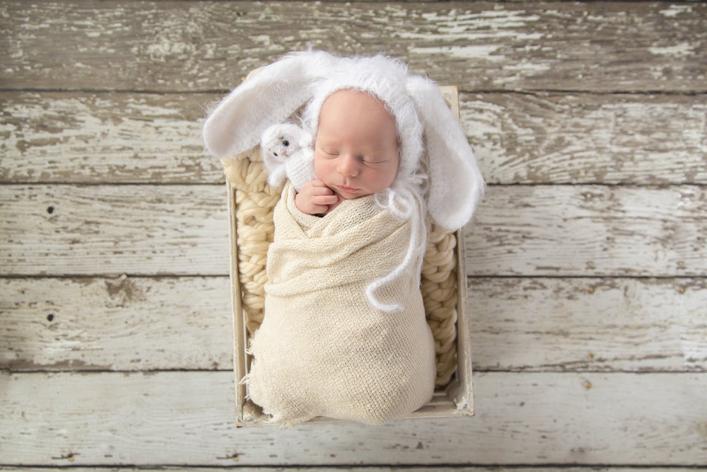Newborn baby boy wrapped and in a crate, wearing a bunny hat and holding a little bunny toy. Calgary Newborn Photographer. Milashka Photography.