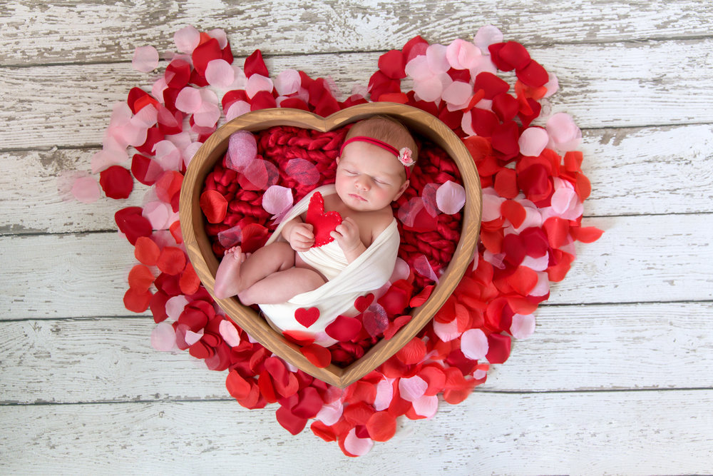 Valentines Day inspired Newborn Photoshoot ideas. Newborn baby girl in a heart shaped bowl, surrounded by rose petals and hearts. Calgary Newborn Photographer. Milashka Photography