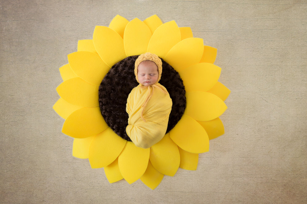Baby girl wrapped in a yellow wrap with a yellow hat, sleeping soundly on top of a huge sunflower. Newborn Photoshoot ideas. Calgary Newborn Photographer - Milashka Photography