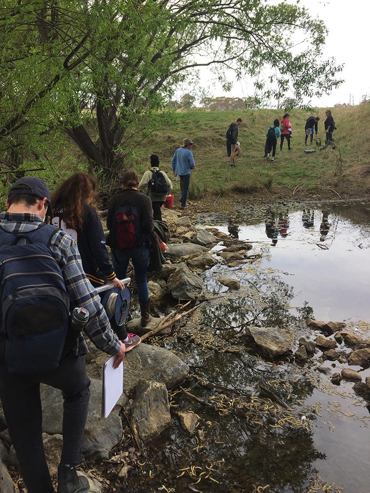 Crossing leaky weir on Mulloon Creek.