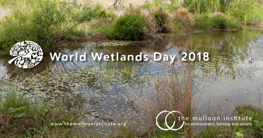World-Wetlands-Day-2018.jpg
