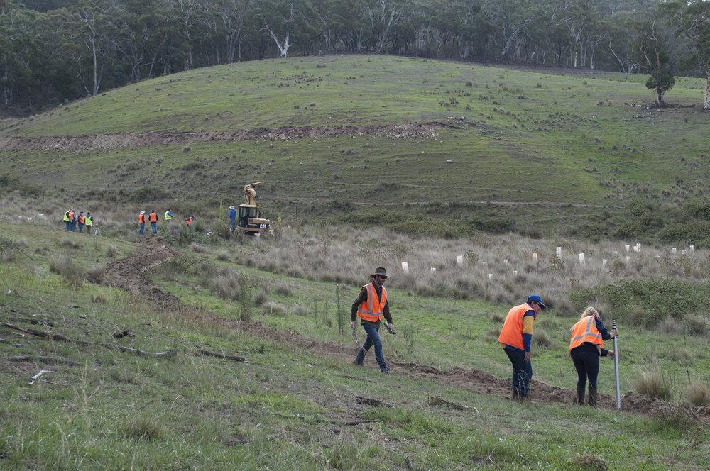 Regenerating landscapes, rehydrating Australia