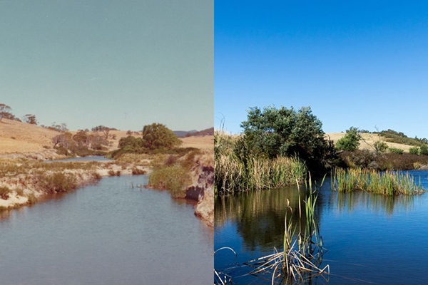 Before and after: Mulloon Creek in 1977 and 2015.