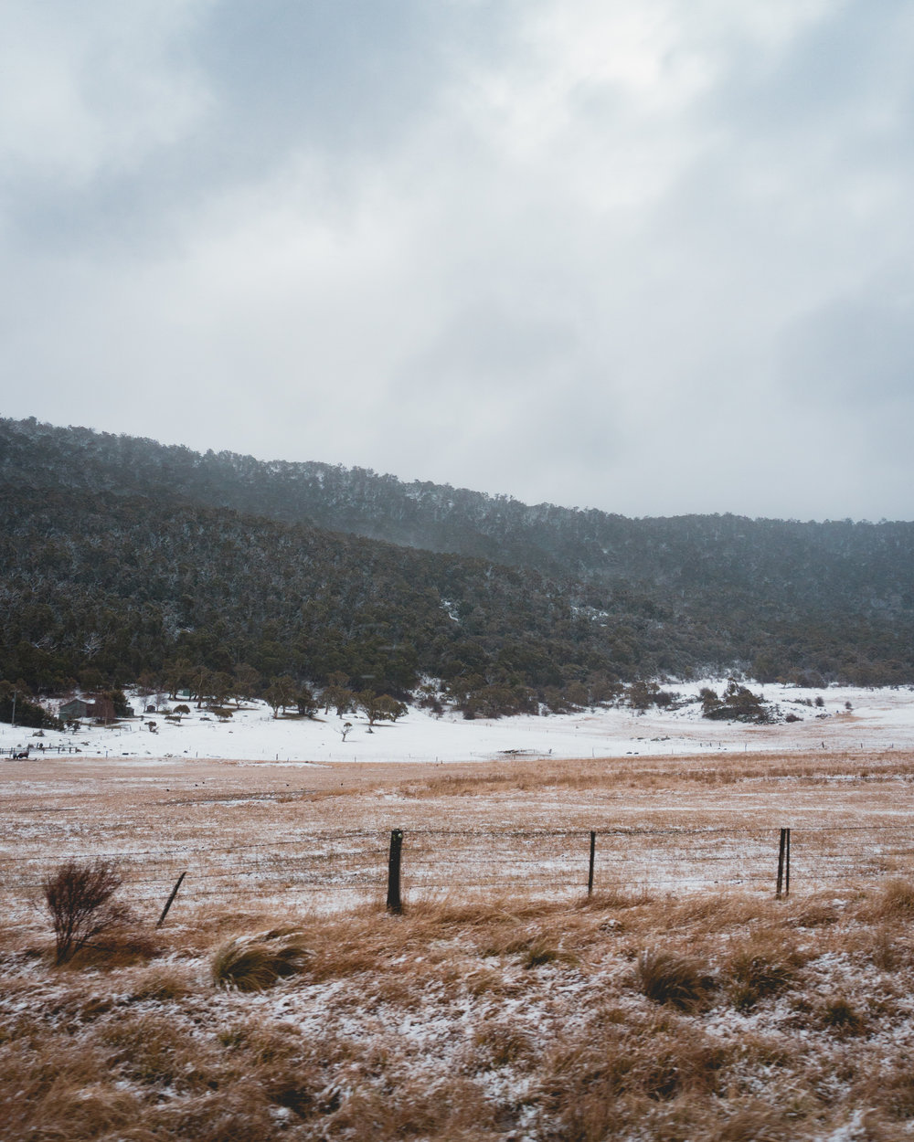 Still can't believe snow exists in Australia.