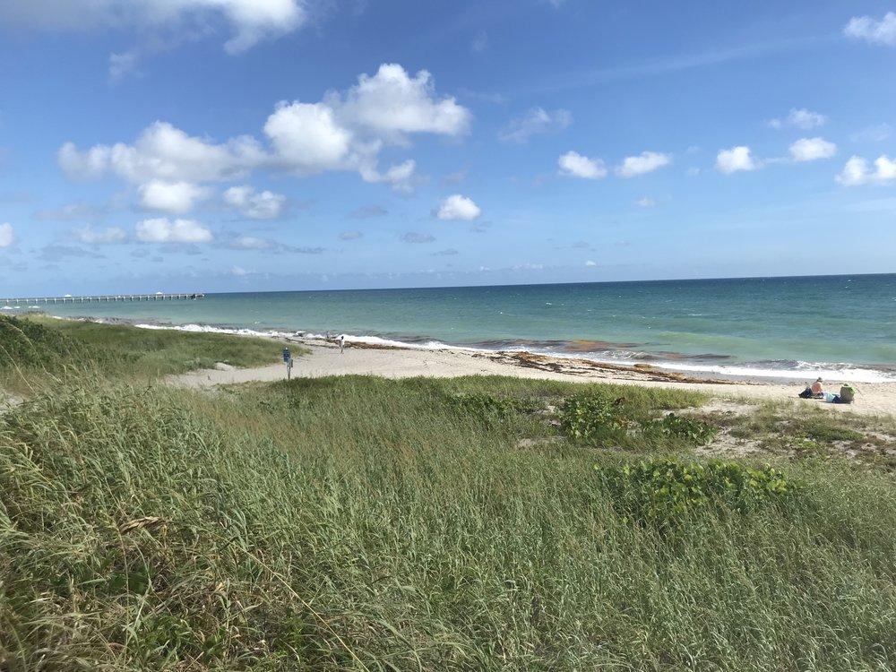 Juno beach.JPG